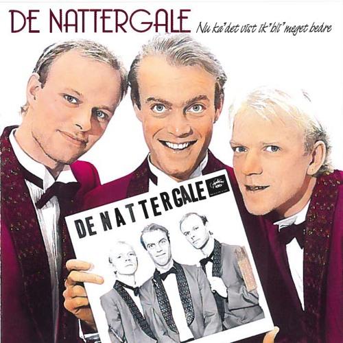 De Nattergale's avatar