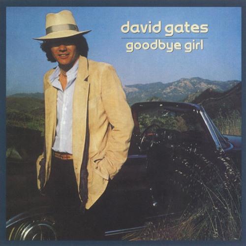 David Gates's avatar