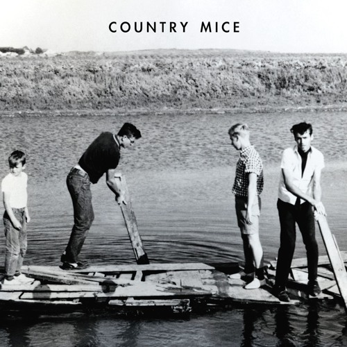 Country Mice's avatar