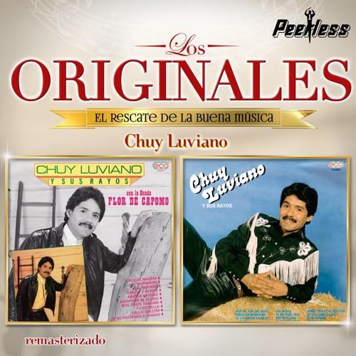Chuy Luviano's avatar