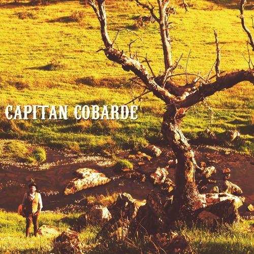Capitán Cobarde's avatar
