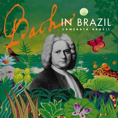 Camerata Brasil's avatar
