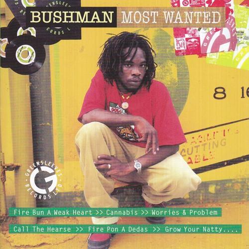 Bushman's avatar