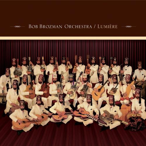 Bob Brozman Orchestra's avatar