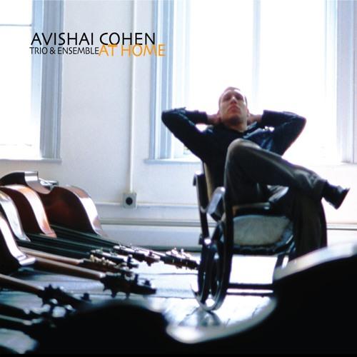 Avishai Cohen's avatar