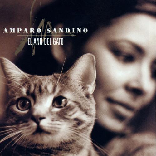 Amparo Sandino's avatar