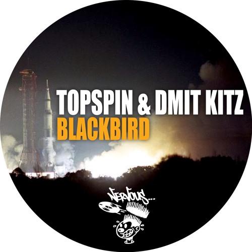Topspin & Dmit Kitz's avatar