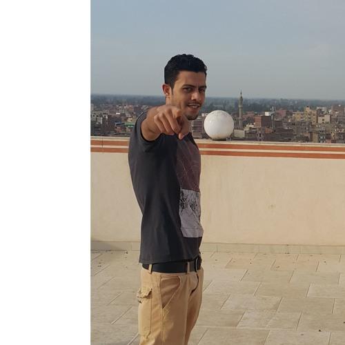 Mostafa Shref's avatar