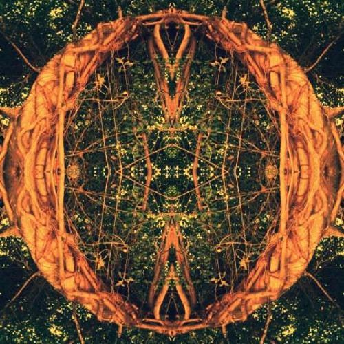 Cosmic Bloom Band's avatar