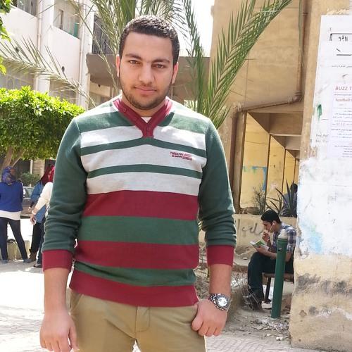 Ahmed Abd Elmaksoud's avatar