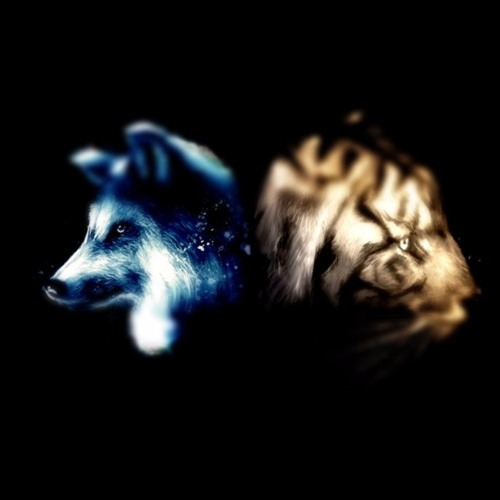Tiger and the Wolves's avatar