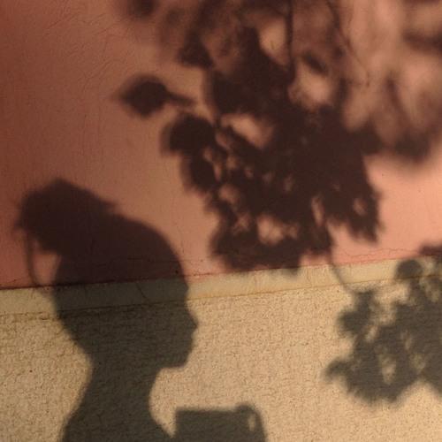 bulut pembesi's avatar