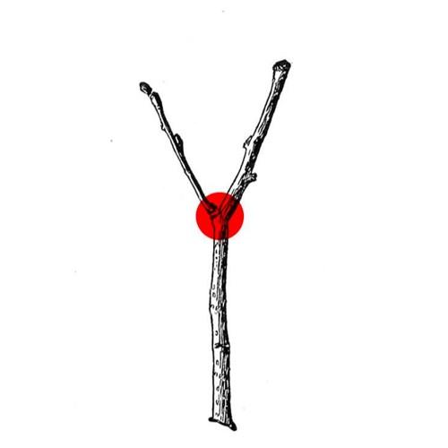 bifurcationpoint's avatar