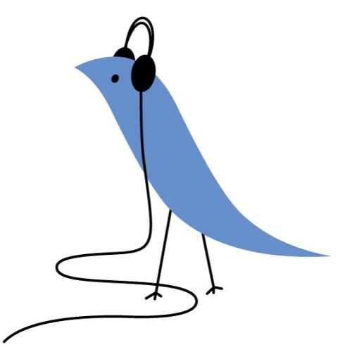 grace design's avatar
