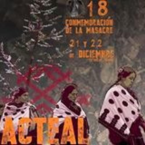 Las Abejas Acteal's avatar