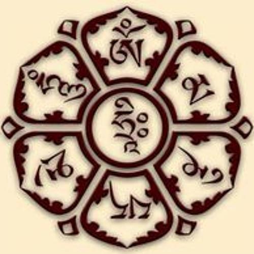 Phước Hiếu's avatar