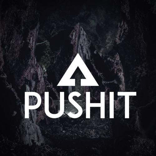 PUSHIT's avatar