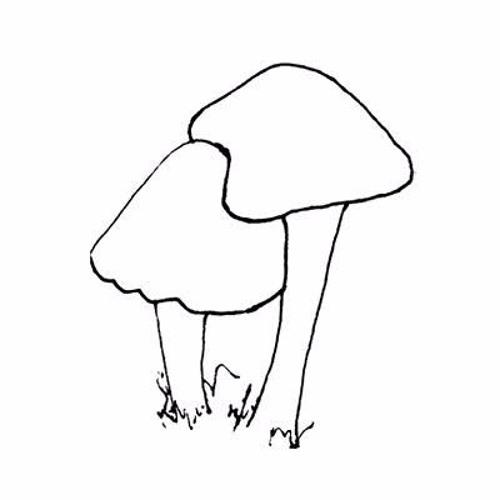 Fungi's avatar