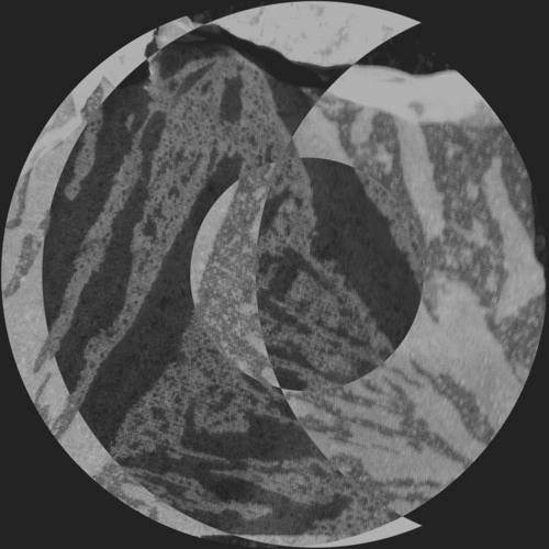 Satz's avatar