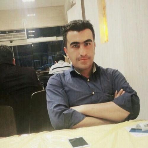 ha med584's avatar