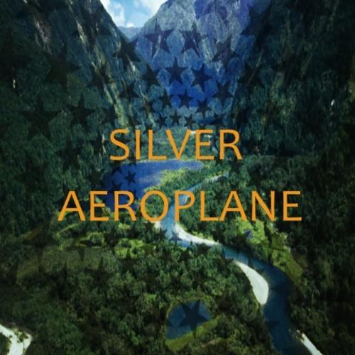 SILVER AEROPLANE's avatar