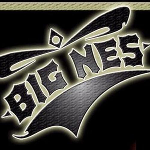 Big Nes's avatar