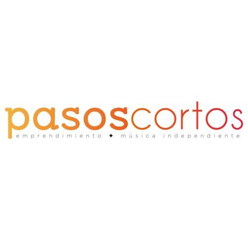Pasos Cortos Chile's avatar