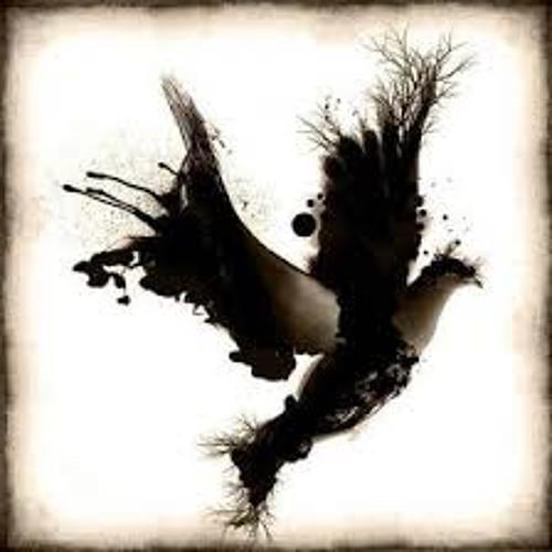 Black Dove's avatar