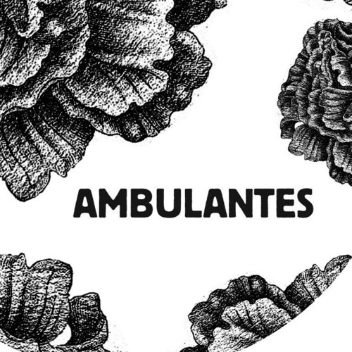Ambulantes's avatar