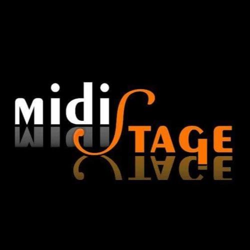 Midistage - Petr Eger's avatar