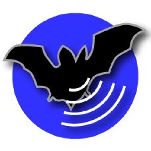 Bat Recorder's avatar