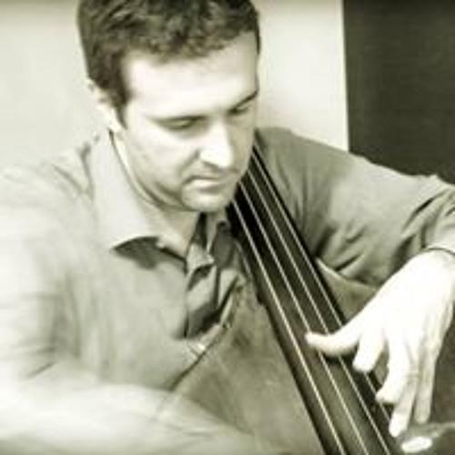 Nicola Malagugini's avatar