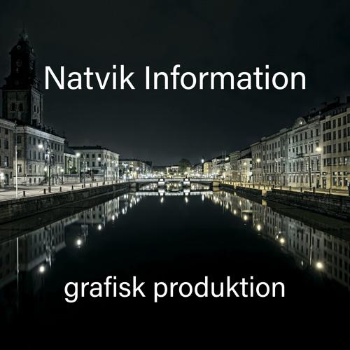 Natviks podcast's avatar