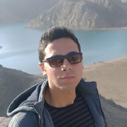 Hashimian's avatar