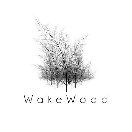 WakeWood Productions's avatar