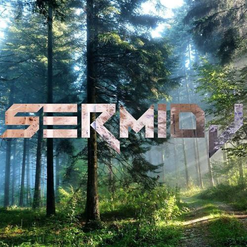 SermiDj's avatar