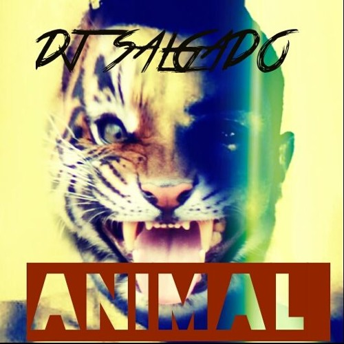 DJ Salgado Officiel's avatar