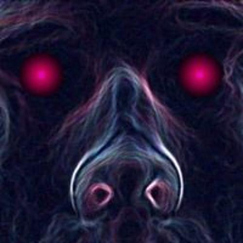 Julien Frapprie's avatar