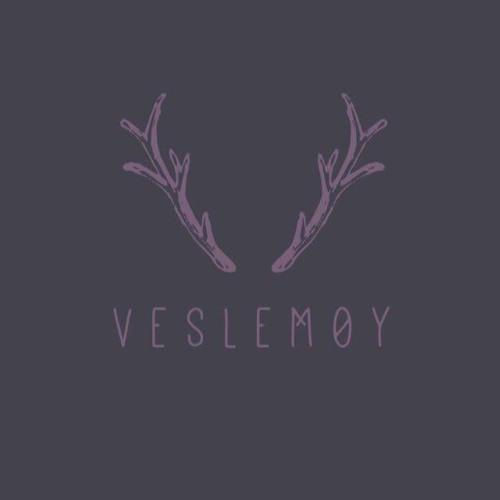 V E S L E M Ø Y's avatar