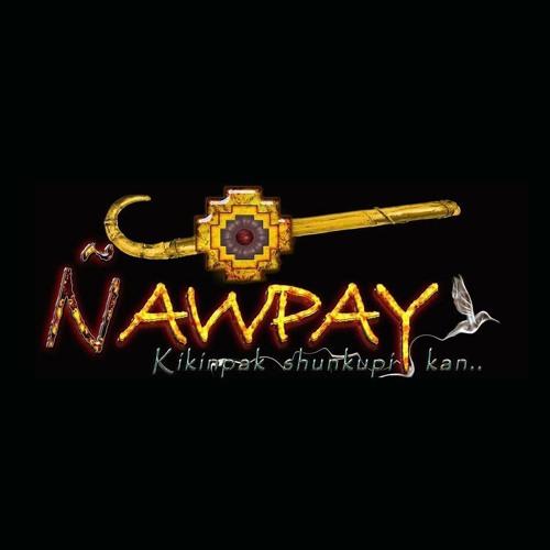 Ñawpay Ecuador's avatar