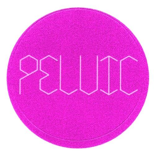 PELVIC's avatar