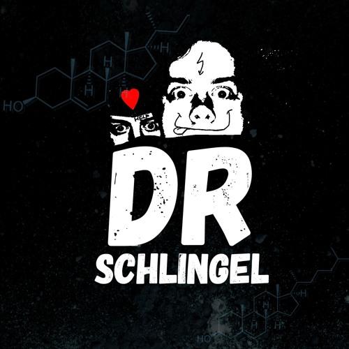 Dr Schlingel's avatar