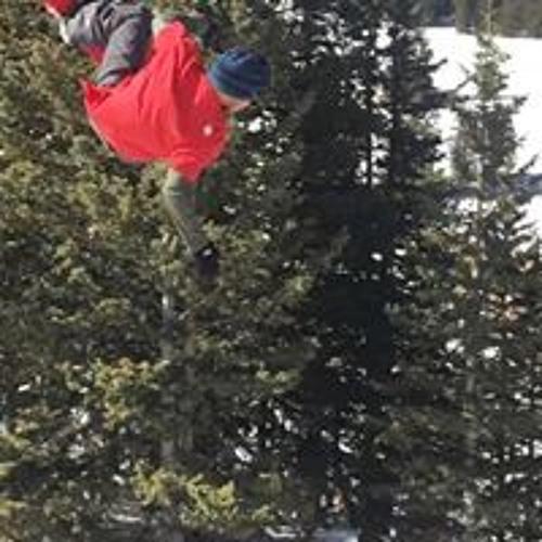 Josh Danger Mullins's avatar