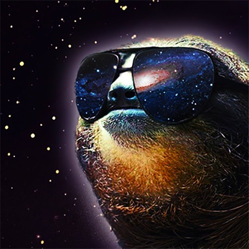 Sloth Punch's avatar