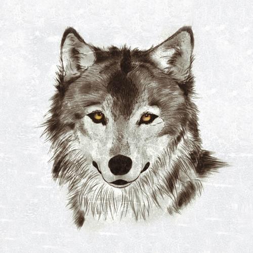 w0lfix's avatar