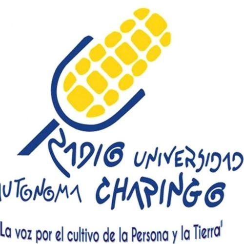 Radio Chapingo's avatar