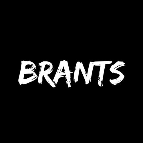 Brants's avatar