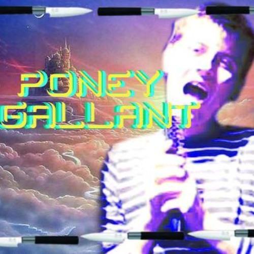 PONEY GALLANT's avatar
