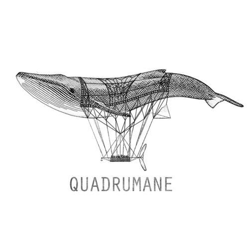 Quadrumane's avatar