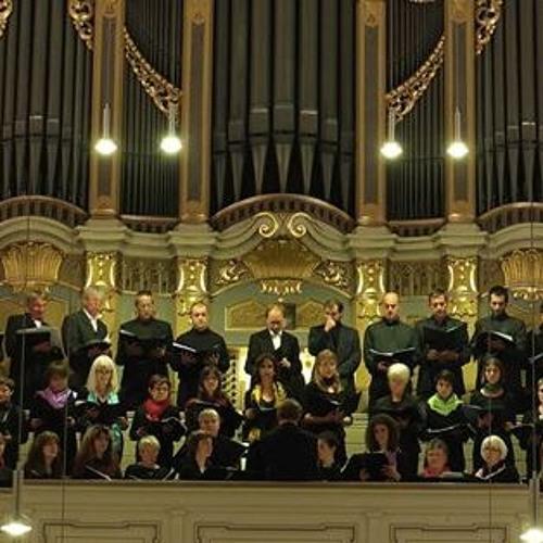 Coro Valdese di Torino & Friends's avatar